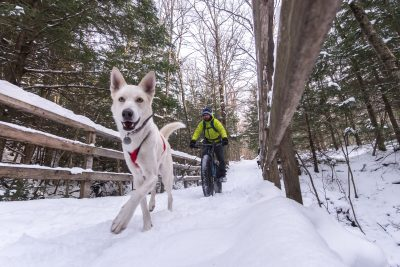 La traversée d'un pont lors dune aventure d'hiver en bikejoring avec les fatbikes Panorama Chic-Chocs et le Husky blanc