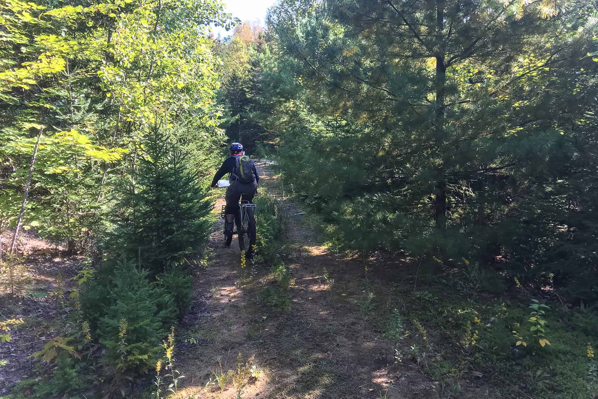bikepacking panorama cycles réserve papineau labelle